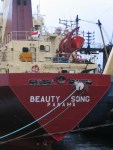 BeautySongFlag4990