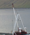 CraneWhite5390