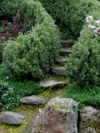 Stairs072810007